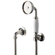 Waterworks Nickel, Polished Handshower Kit Product Number: 05-46487-17363