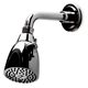Waterworks Brass, Unlacquered Shower Head Product Number: 05-14744-47530