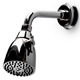Waterworks Nickel, Polished Shower Head Product Number: 05-40664-76906