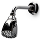 Waterworks Chrome, Polished Shower Head Product Number: 05-57429-42109